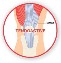 TendoActive Bioiberica